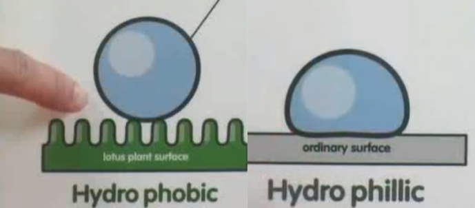Hydrophobic Diagram