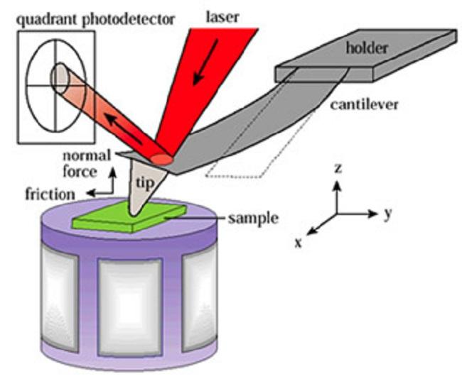 Atomic Force Microscope Diagram